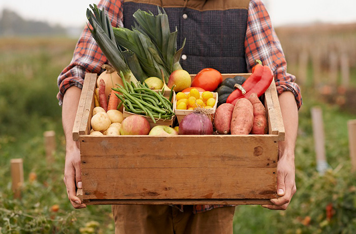 همه چیز درباره محصولات ارگانیک